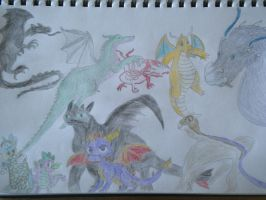 Many Dragons coloured by woodywoodwood