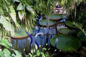 Chihuli Glass Hamadryads PoW Amazon Lily Pond, Kew by aegiandyad