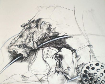 Driftwood and Pods WIP by m3liii