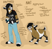 Fursona Reference 2012 by AeroSocks