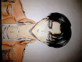 Levi by Wasi3232