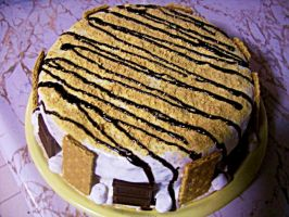 S'mores Cake by RachiePooh24