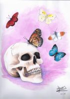 Skull and butterflies by Jam1992