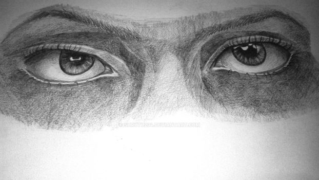 FACIAL FESTURES SERIES : Eye 1(thank you everyone) by Shruti1234