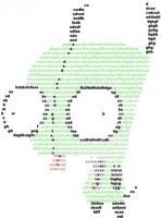Gir Typed by AniCyborg