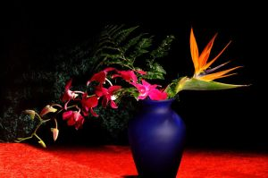 Tropical Flowers+Blue Vase 3 by Art-Photo