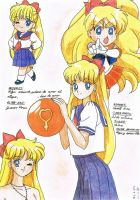 Sailor Venus is Minako by Niisai