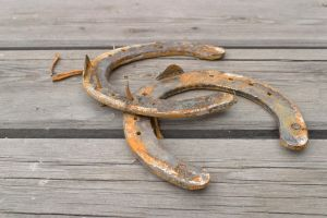 Horse shoes by theGuffa