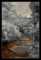 White Path by acidmaker