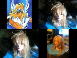 Hyoga  Wig by Zell-Ecstasy