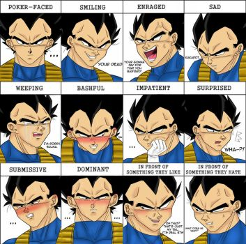 Expressions Meme by NekoLover628