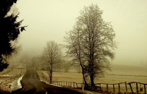 The Road leads into....Fog by michaeljtr