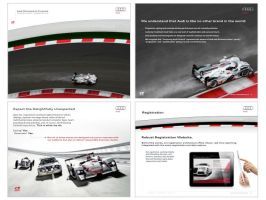 Audi Racing by rlough