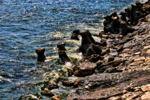 Seaside HDR by HDRenesys