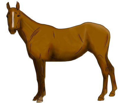 Horse Painting Practice by MoonPhantomWolf