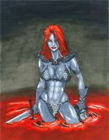 Copic Colors No13 - Red Sonja by ChrisShields