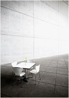 Concrete Still Life by zuckerblau