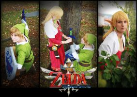 Legend of Zelda Skyward Sword by KuraiOfAnagura