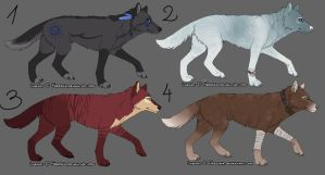 Wolf/Dog Adoptables CLOSED by FourPawsADOPTS
