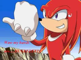 Wow Knuckles.... by SonicXfangirl