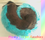 Husky tail for Ravebinx by caffeinatedcrafts