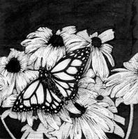 Butterfly: 001 by Litao