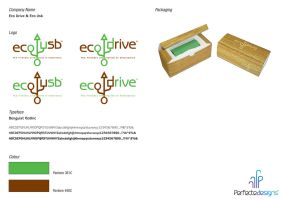 Eco USB Logo by Perfectedesigns