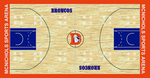 Classic Denver Broncos Court by S231995