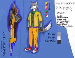 Shard Eyries Ref sheet by Tysavarin