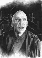 Lord Voldemort by maya-Notliketheother