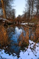 Minnowburn Winter 09 by Gerard1972