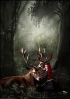 Daughter of the Forest by sioux-she