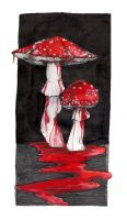 Fly Agaric by fiskmat