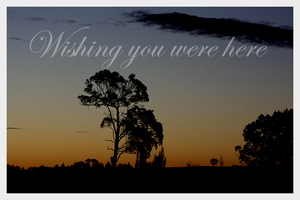 Wishing you were here by Tepara