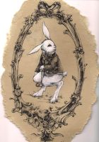 the white rabbit. by radicalpanda