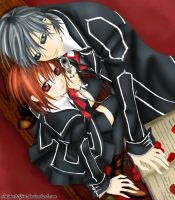Vampire Knight Yuki and Zero by anime91girl