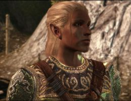 Origins Zevran by losttales33