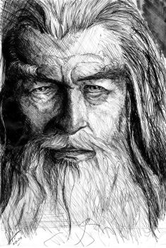Gandalf The Grey - The Lord Of The Rings by titinacho
