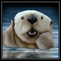 April 2012---Sea Otter by amydrewthat