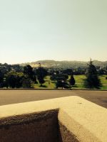 FOREST LAWN - VIEW FROM DOORWAY by KerensaW
