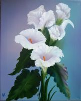 Cala Lillies by W. Redman by wanred