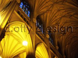 St. Patrick's Cathedral 1 by danimals