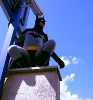 Batman animated seried cosplay by LordJoker88