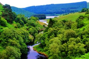 Elan Valley River by Deb-e-ann