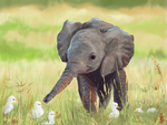 Baby Elephant by blueisocean