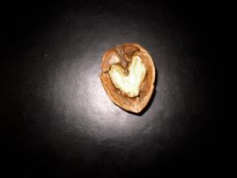 love is.. everywhere by aDayInJuly