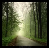 Green world: Light 2 by manroms