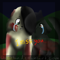 I miss you by WolfieTan