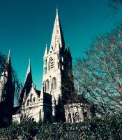 Saint-Fin-Barre's-Cathedral by 1darkstar1