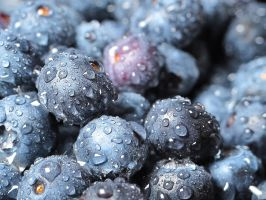 Bokeh Of Blueberries... by NaturesTouch